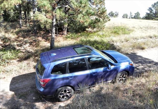 2016 Subaru Forester - 12 - AOA1200px