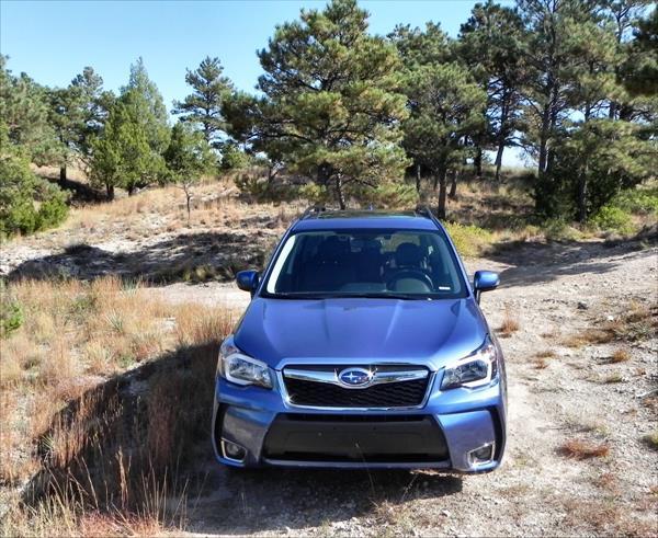 2016 Subaru Forester - 7 - AOA1200px