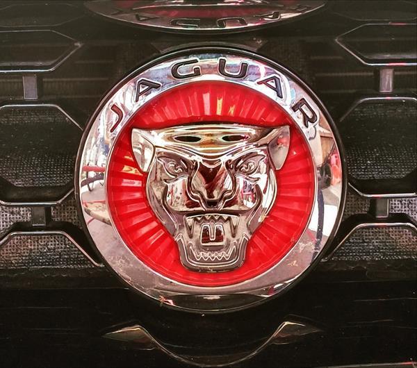 2016 Jaguar F-TYPE R Convertible - badge 1 - AOA1200px