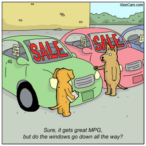 Funny comic with dogs shopping for cars at a dealership