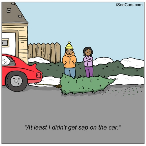 Shopping for Christmas tree, how to bringing it home with car funny comic